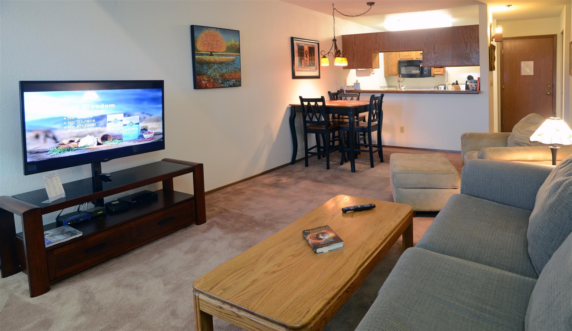 Unit 415 Living Area